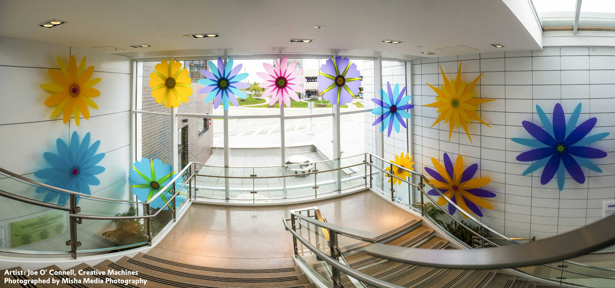 Bloom_Display_in_Childrens_Hospital___update